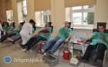 Oddali krew 2,5 tys. razy
